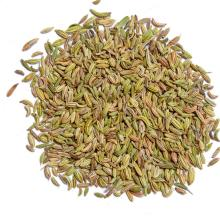 Quality Fennel Seeds and Powder on 30% discount now