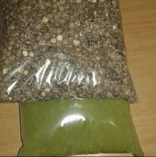 Moringa Seeds...