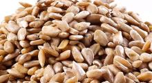Raw Sunflower Seeds (With shell / Without Shell) now available on 30% discount sale