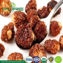 Organic Dried Sea Buckthorn Berry