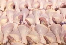 frozen grade a chicken legs