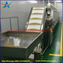 Tunnel Belt Microwave Insecticidal machine ,Microwave Insects Killer