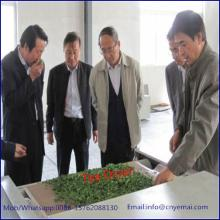 YM-20 Continuous Tea Leaf Fixation Machine