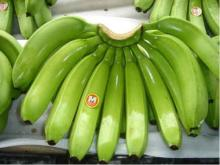 Fresh Cavendish Banana now available on sale