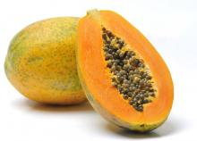 High Quality Fresh Papaya now available on sale