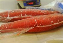 Sashimi Grade Frozen Tuna