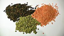Lentils at wholesale prices