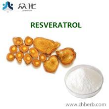 Polygonum Cuspidatum Root Extract Resveratrol98%