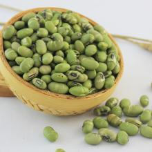 Dried  roasted   edamame  hot seller Kosher certificated