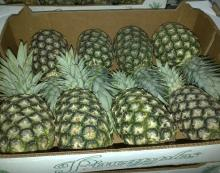 Quality Fresh Pineapple now available on sale. 30% discount