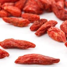 fresh dried Goji Berry hot sale