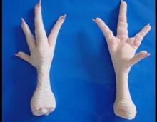Grade A Whole Chicken ,Halal Frozen Processed Whole Chicken Grade A