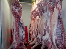 Cheap Frozen Pork Meat , Pork Hind Leg, Pork feet for export FOR SALE