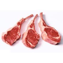 FROZEN BONELESS BEEF/BUFFALO MEAT READY FOR SUPPLY
