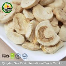Halal food chinese freeze dried mushroom from ISO certified company