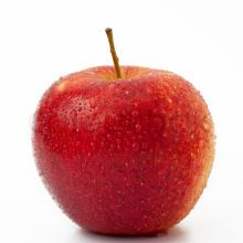 Red Fresh apple at wholesale prices