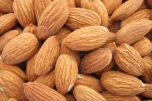 Almonds nuts at wholesales prices