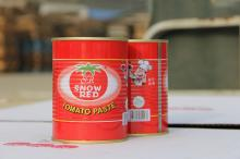 tomato paste in can