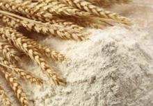 high quality premium and first grade wheat flour