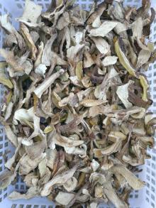 high quality A grade dried boletus