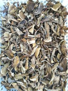Export B grade dried boletus