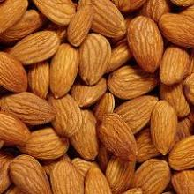 Best price raw medicinal materials dried nuts kernels almond /bitter almond kernels