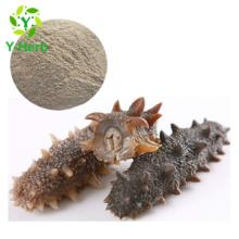 Freeze Dried Peptide Bulk Wild Sea Cucumber Extract Powder