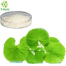 gotu kola/Centella asiatica extract Powder Asiaticoside 10% 20% 30% 50%