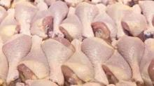 Best frozen chicken distributors- chicken wholesale suppliers- brazil chicken suppliers