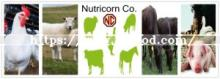 Lysine   Feed  Grade Manufacturer in China