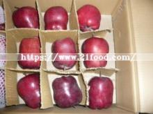 Fresh New Crop Huaniu Apple
