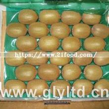Exported Quality  Chinese   Fresh   Green  Kiwi  Fruit
