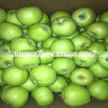 2017 New Crop Fresh Green Gala Apple Fruit