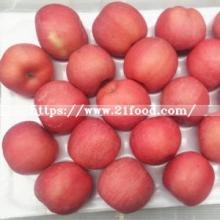 Fresh Blush Red FUJI Apple From Yantai