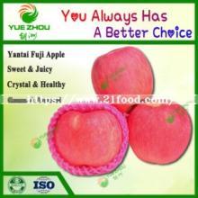 Red FUJI Apple Fresh Yantai FUJI Apple with High Quality