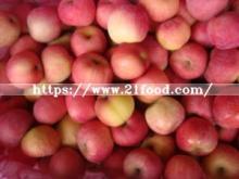 Fresh FUJI Apple (80mm) New Crop