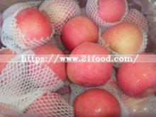 Plastic Bagged, New Crop China FUJI Apple
