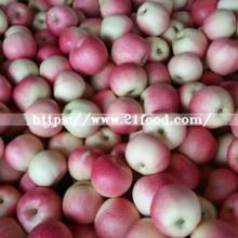 Small Size Red Gala Apple in 20kg Carton