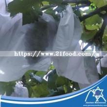 UV Grape Bag PP Spunbond Non- Woven   Fabric  Jc-012