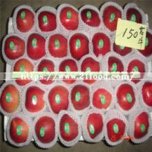 Wholesale Fresh Red Star Huaniu Apple