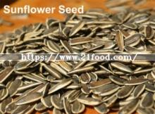 Export Quality Roasted  Spiced  Chinese  Sunflower   Seeds