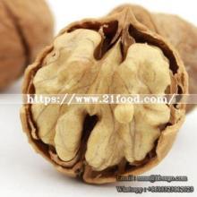 High Quality AAA Walnut Easy Cracked Walnut Sweet Walnut