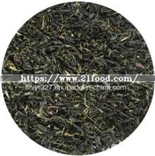 Jasmine Green Tea Leaf for EU/Us/ Japan  Market