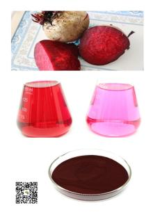 Dried red beet root powder 80-120mesh from base plant