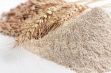 High Quality Wheat Flour