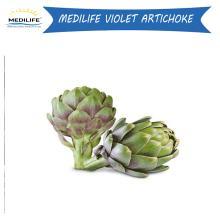 Artichoke, Mediterranean Fresh Violet Artichoke