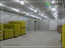 Latest Technolog Good Performance Efficient top quality freezing storage blast Freezer cold room