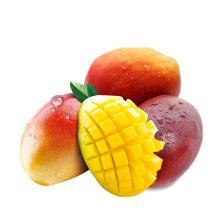 2019 Fresh Fruits Alphonso Mango