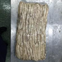 precooked mackerel loin(scomber japonicus)