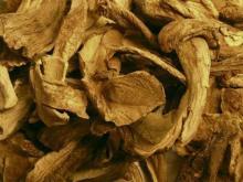 Dried Porcini mushroom king bolete